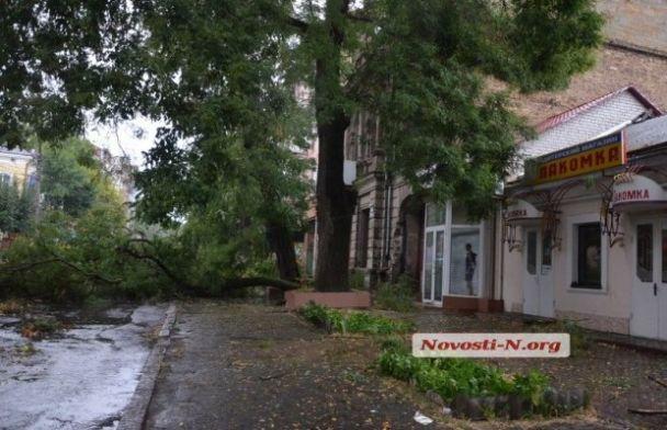 Зламані дерева, обірвані дроти та град: Миколаїв атакувала рясна злива