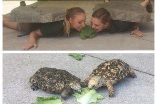 Развлечения работников зоопарка и крутая мамочка, которая утерла нос сыну студенту. Тренды Сети