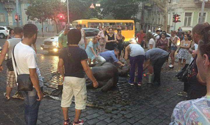 кінь зомлів в Одесі_1
