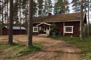 У Фінляндії зникла група із 37 збирачів ягід з України