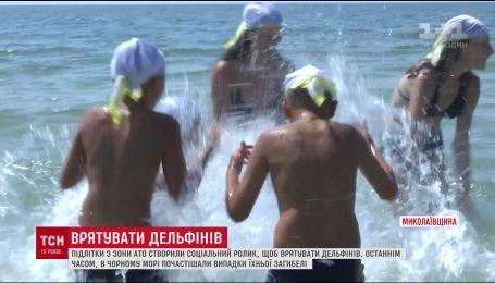 Подростки из зоны АТО создали социальный ролик, чтобы спасти дельфинов