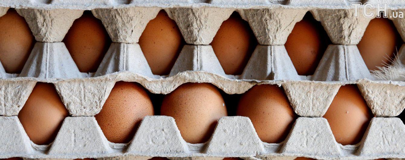 У Нідерландах затримали підозрюваних у справі про зараження яєць інсектицидами