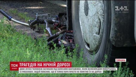 На Сумщині водій вантажівки збив на смерть 2 літніх чоловіків