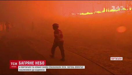 Португалия снова в огне