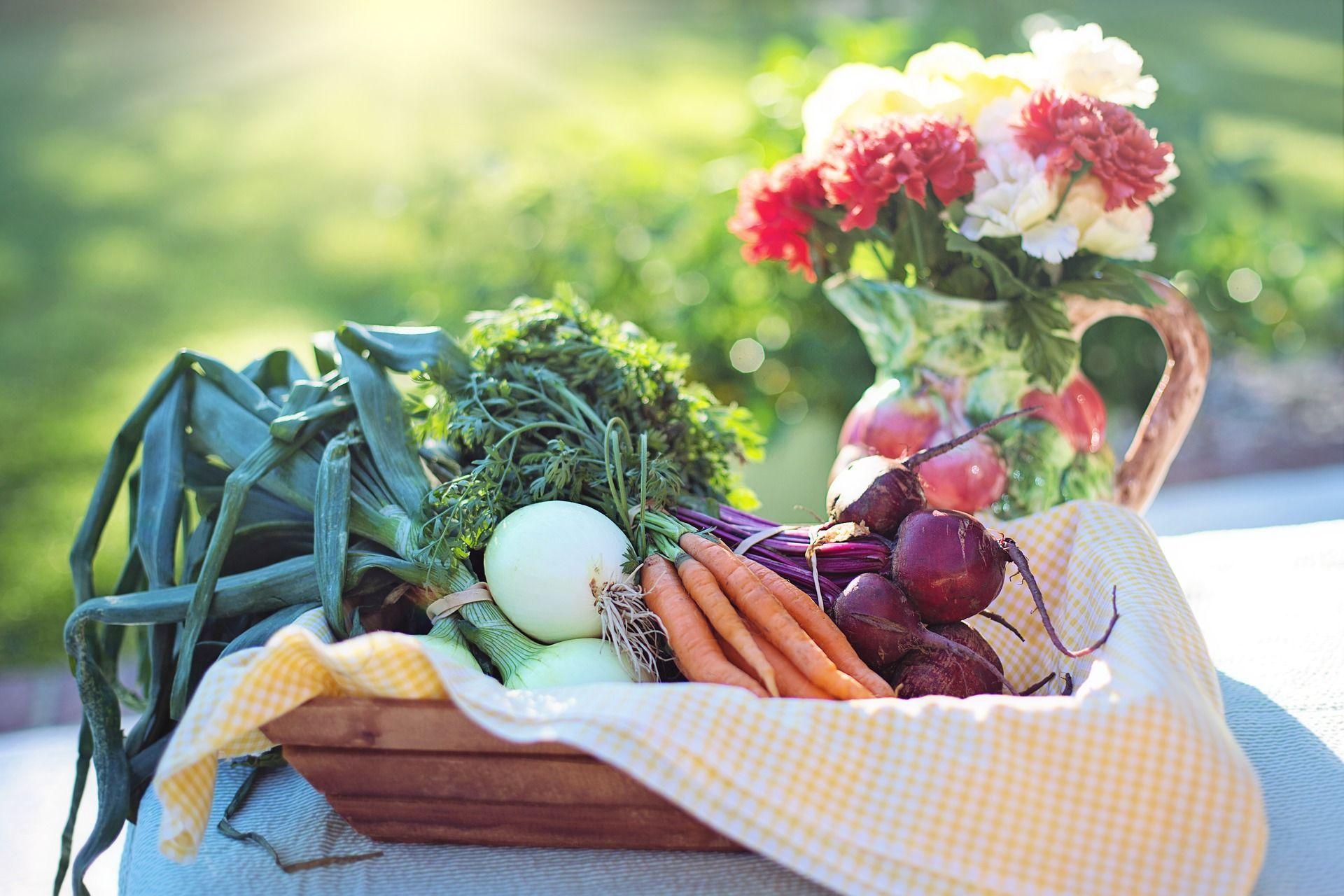 овочі, їж, вегетаріанство, веганство_3