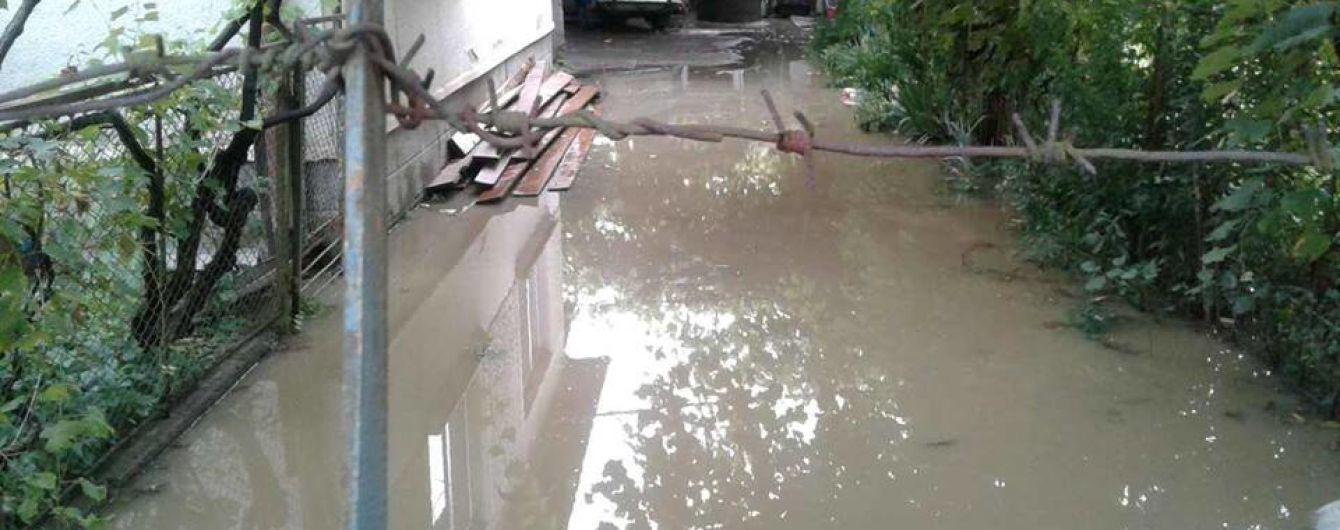 На Закарпатті сильний вітер повалив дерева, а дощі затопили подвір'я місцевих мешканців - ДСНС