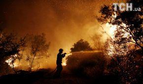 Греция задыхается от едкого дыма из-за масштабных лесных пожаров