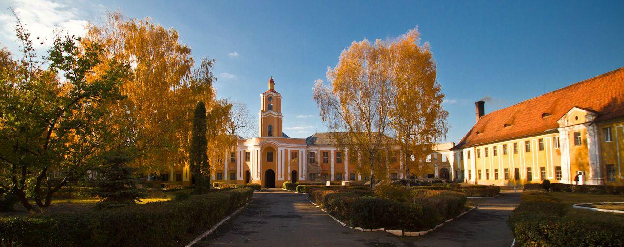 Олика, Олицький замок Радзівілів
