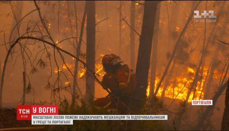 В Греции и Португалии с новой силой вспыхнули лесные пожары