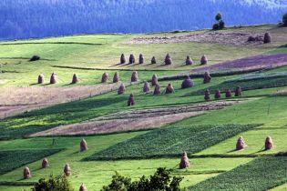 На Черкасчине экс-глава Госгеокадстра области и депутат совета погорели на земельных махинациях