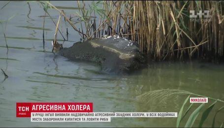 В реке Ингул в Николаеве случайно обнаружили очень агрессивный возбудитель холеры