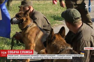 На Львівщині службові собаки Нацгвардії змагалися у вправності та витривалості