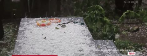 Зимові краєвиди та вбиті птахи: Львів накрила потужна злива з градом