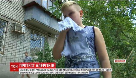 В Запорожье горожане, страдающие аллергией от амброзии, устроили протест