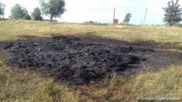 ВХарьковской области ребенок сгорел втюке соломы