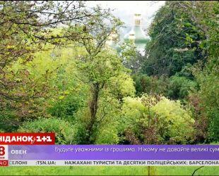 Уникальная коллекция растений ботанического сада имени Гришко