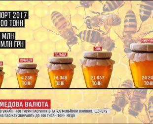 Со своим качественным медом Украина вырвалась в лидеры мирового экспорта