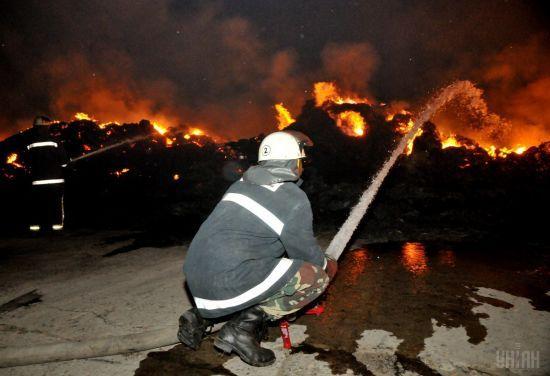 На Житомирщині горить 120 га заповідника, вогонь гасять за допомогою авіації
