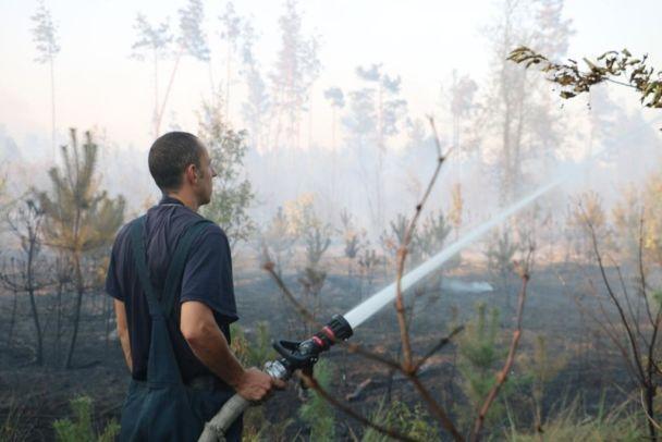 УКиєві наБроварському проспекті горить близько 4 гектарів трав'яного настилу