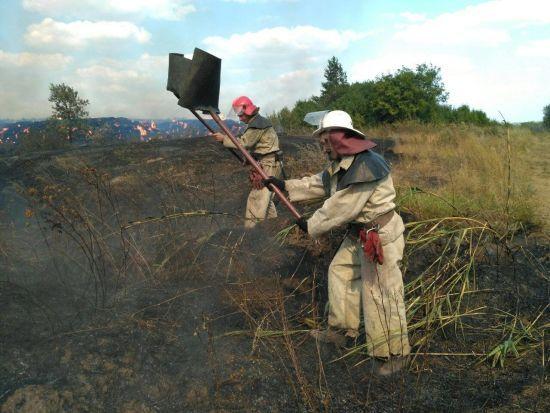 Через неймовірну кількатижневу спеку в Україні масово почали палати ліси й поля