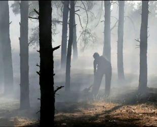 Из-за жаркой и сухой погоды в Украине вспыхивают лесные пожары и занимается трава