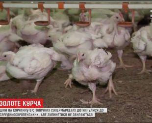 В Украине значительно выросла цена на мясо