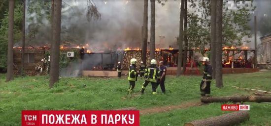 Кухарка героїчно врятувала папугу під час пожежі ресторану в Києві