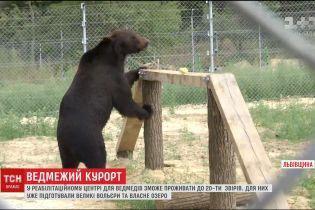 На Львівщині завершують будівництво притулку для ведмедів