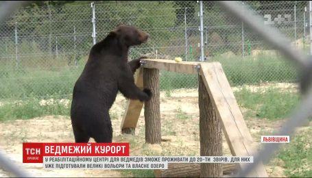 На Львовщине завершают строительство приюта для медведей