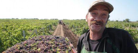 Соціологи підрахували, скільки українців хочуть поїхати на заробітки за кордон