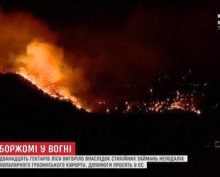 Грузия просит о помощи соседей и ЕС в борьбе с пожарами