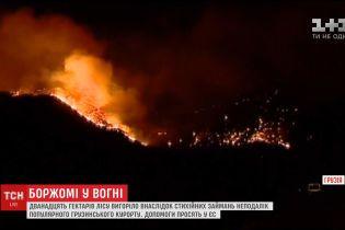 Грузія просить про допомогу сусідів та ЄС у боротьбі з пожежами