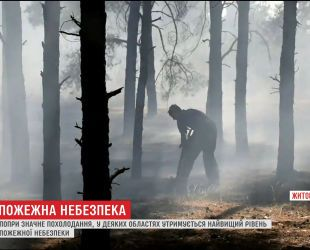 Пожарная опасность: спасатели продолжают бороться с огнем на Житомирщине