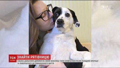 Пошуки Дуні: киянка розшукує зниклу собаку, яка допомогла їй оговтатись після важкої хвороби