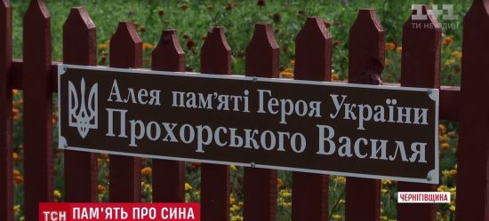 Мати Героя Небесної Сотні взялася власноруч прикрашати вулицю його імені