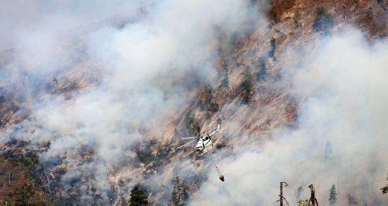 Україна відправить літак до Грузії для допомоги в гасінні лісових пожеж