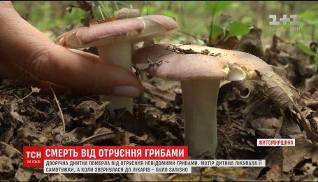 На Житомирщині 2-річна дівчинка померла від отруєння грибами