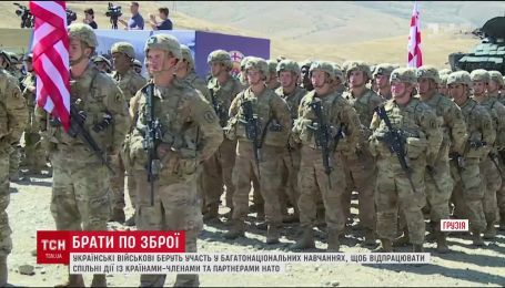 Украинские военные в Грузии участвуют в учениях с подразделениями стран-членов НАТО