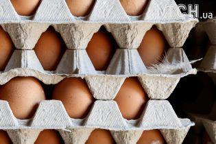 Куриные яйца дорожают из-за вероятного картельного сговора производителей – эксперт