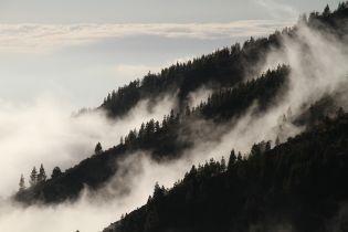 В Карпатах из-за густого тумана в горах потерялся турист