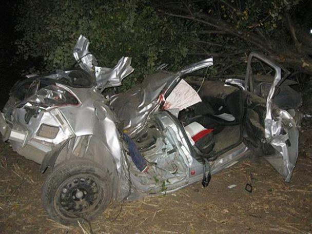 Смертельное ДТП на Херсонщине: легковушка вылетела на обочину и протаранила дерево