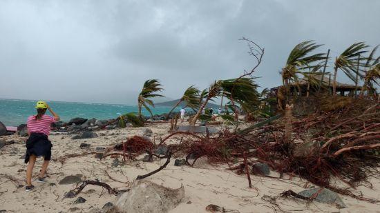 """""""Ірма"""" нокаутувала Флориду: штат очікує на страшне продовження стихії"""