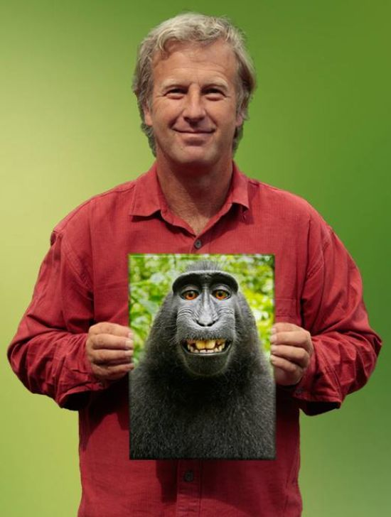 Британський фотограф виборов авторське право на селфі макаки