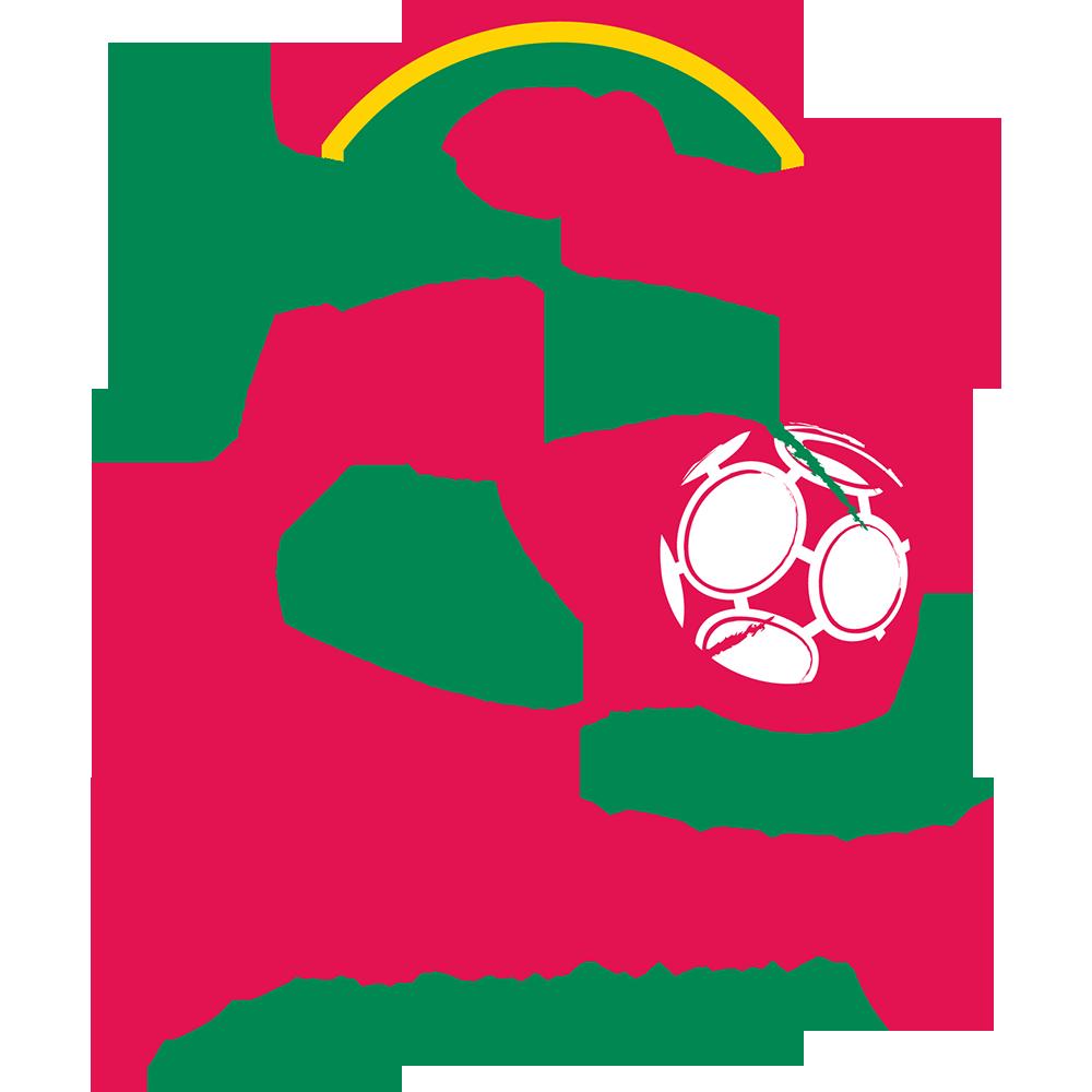 Эмблема ФК «Зюлте-Варегем»