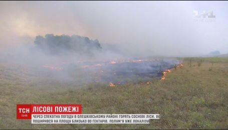 На Херсонщине сохраняется высокий класс пожарной опасности