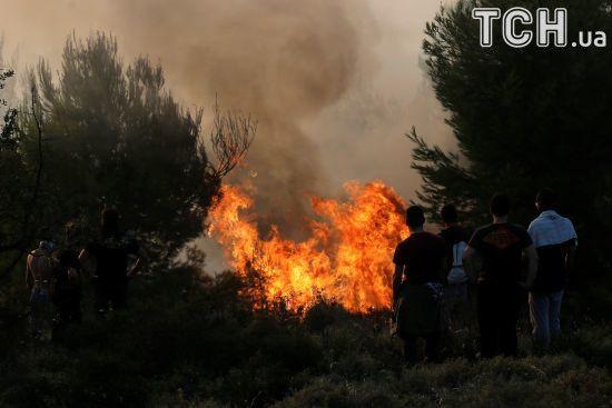 Зі спекою на південь України повернулися лісові пожежі