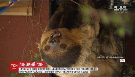 За 600 доларів туристам штату Орегон пропонують пожити поруч з лінивцями