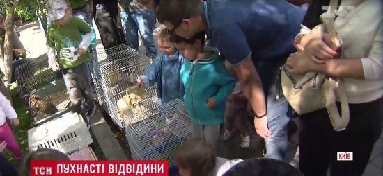 """Тхір, змія та черепаха в """"Охматдиті"""": київський зоопарк улаштував свято для хворих малюків"""