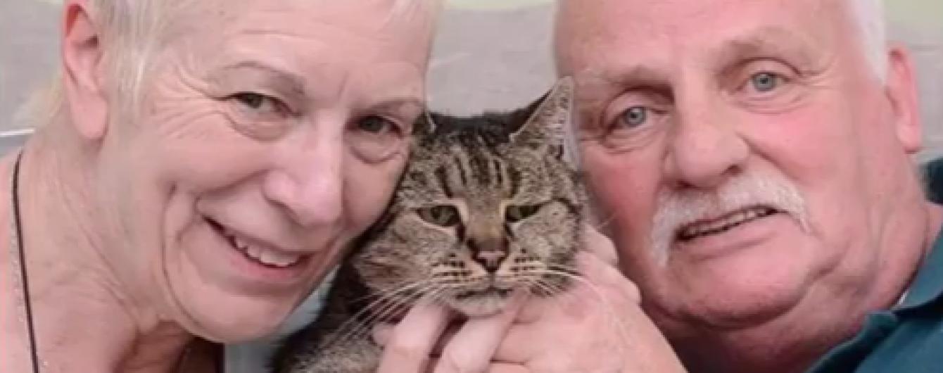 В Британии умер старейший в мире кот