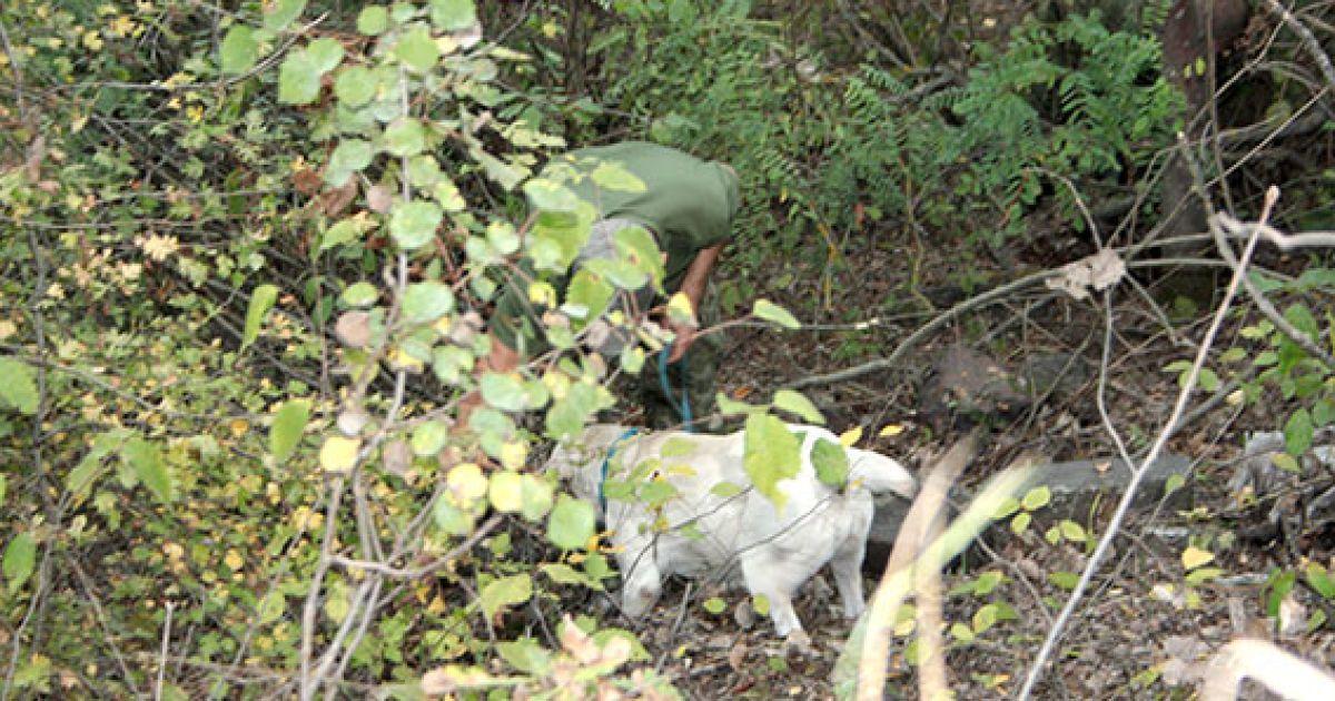 @ ГУ Национальной полиции в Полтавской области